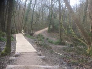 A new walkway to get over a boggy patch