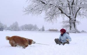 January snow-3