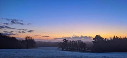 Early on a frosty morning at East Court. Courtesy of Stuart Webber